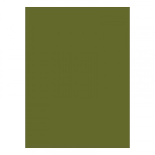 BIOTOPE 244gsm C8 moss green 21