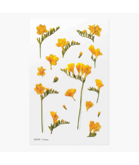 APPREE Press Flower Stickers Freesia