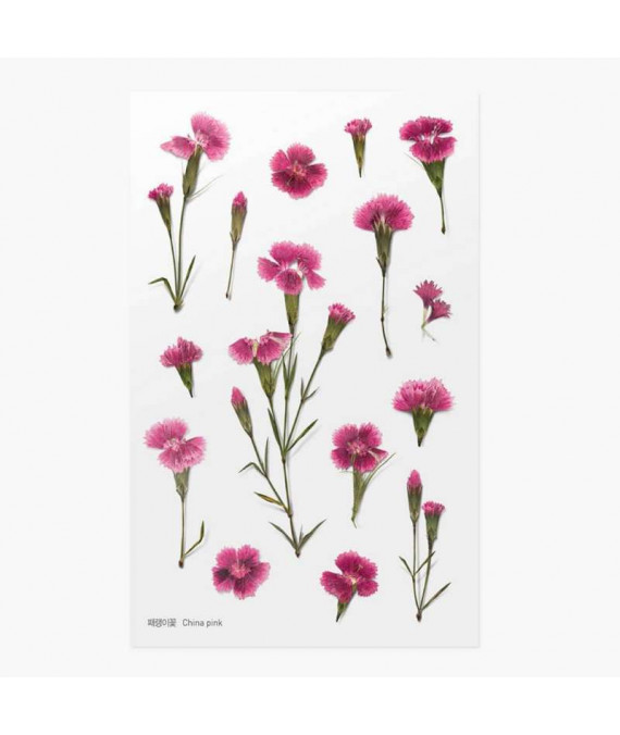 APPREE Press Flower Stickers China Pink